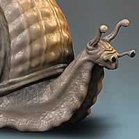 http://www.pixologic01.com/zbrush/gallery/files/0503stumpf/Snail1.jpg