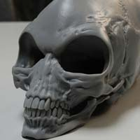 http://www.pixologic01.com/zbrush/gallery/files/0806Patton/Proto_Skull34.jpg