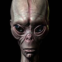 http://www.pixologic01.com/zbrush/gallery/files/0809DHARMAESTUDIO/alien-new.jpg