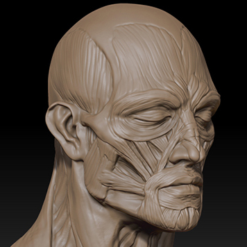 http://www.pixologic01.com/zbrush/gallery/files/110808-DavidGiraud/attachment2.jpg