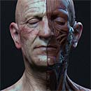 http://www.pixologic01.com/zbrush/gallery/files/140916-askutt/attachment.jpg