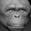 http://www.pixologic01.com/zbrush/gallery/files/141210-badclaystudio/attachment1.jpg